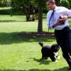 Obama y su perro